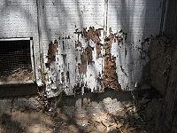 200_200px-Termite_damage